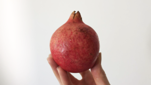 A hand holding a pomegranate